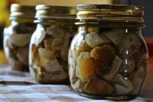 funghi porcini sotto olio
